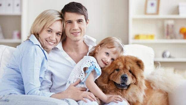 Wills & Trusts dog-young-family Direct Wills Hackney Wick